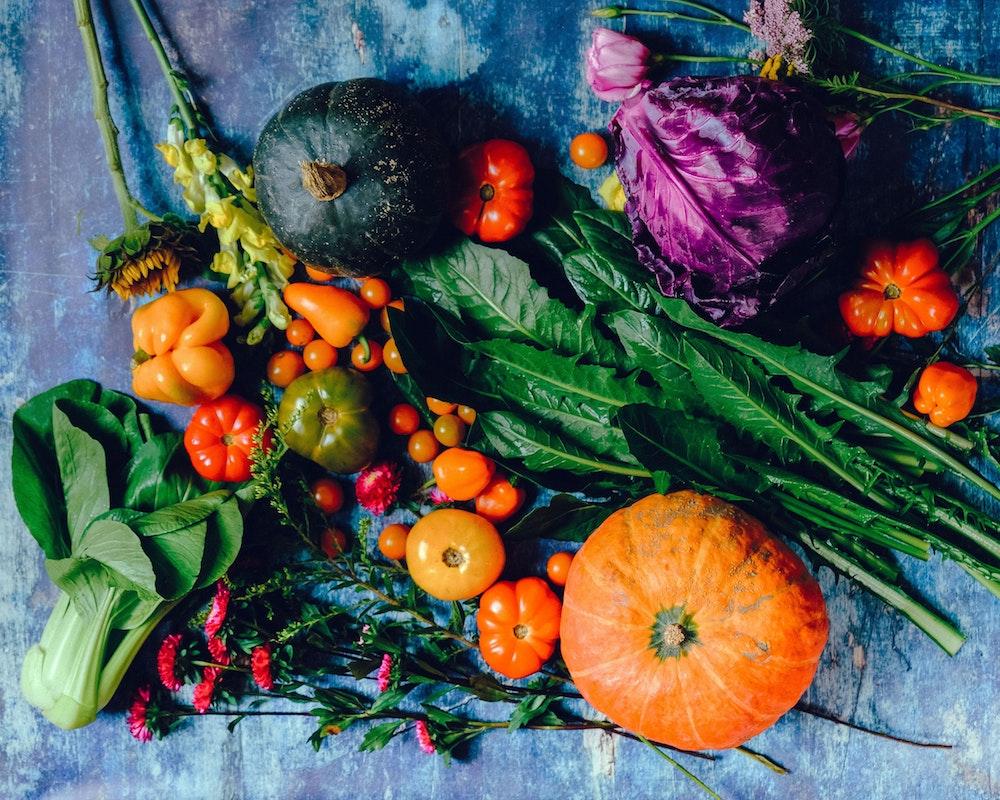 settembre_dieta_nutrizionista_catania